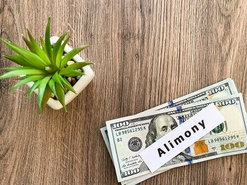 "One hundred dollar bills on a table with an ""alimony"" note on top next to a succulent plant."